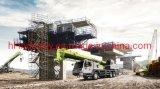 Zoomlion Ztc250r531 25 Ton Hydraulic Crane Telescopic Boom Truck Crane International Level Heavy Lift Mobile Truck Crane with Stock Promotion Right Hand Wheel