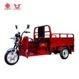 EEC Certificate Best-Seller Cargo or Express Delivery Tricycle with Battery Power