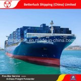 sea freight from China to Sri Lanka Colombo shipping services