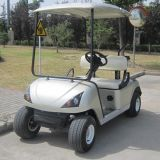 China Manufacture 2 Seater Golf Buggy Electric with CE (DG-C2)