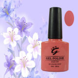 Long Lasting Three Steps 10ml Colorful Bottle Nail Gel Polish