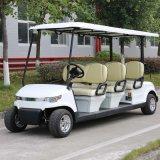 6 Seats Electric Golf Sightseeing Car Wholesale (DG-C6-8)