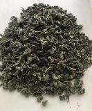 Most Popular Green Tea Fresh Hard Quality Gunpowder for Kazakhstan Uzbekistan 3501