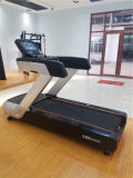Sports Equipment Factory Supply of Commercial Gym Equipment Treadmill for Body Building