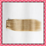 Wholesale Price Human Hair Extensions Clip on Silky 22inches