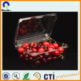 Clear Recycled Pet Sheet for Thermoforming and Food Packing