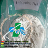 98% Purity Buy Lidocaine Powder Supplier Local Anesthetic Raw Material