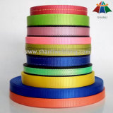 Hot Selling Colorized Nylon / Polyester Webbing for Dog Collars and Leashes