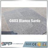 Grey Granite - Popular in China