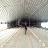 Prefabricated Poultry Barn with Full Set Poultry Farming Equipment