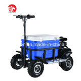 2019 New Style 80cc 4 Wheel Gas Scooter with PVC Box