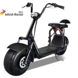 City Coco Fat Tire Electric Motorcycle Two Wheel Electric Dirt Bike