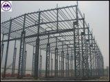 Large Span Prefabricated Light Steel Frame Metal Steel Structure for Prefab Workshop /Warehouse (TW357J)