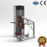 Triceps DIP Made in China with Competitive Price Gym Fitness Equipment