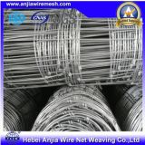 Galvanized Iron Knotted Wire Mesh Field Fence for Building Construction with Good Price