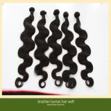 Body Wave Virgin Brazilian Sew in Hair Extensions (ZYWEFT-10)