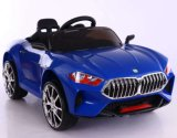 Chinese Factory Wholesale Baby Battery RC Car 6299