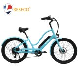 Comfortable Electric Bike for Commuter