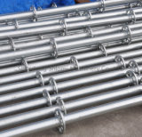 ISO and SGS Certificated H. D. G. E. G. Different Types Stable Steel Material Ringlock Scaffolding