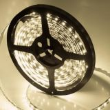 Ce RoHS DC24V 12V SMD High Quality 2835 LED Strip Lamp