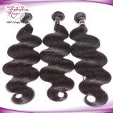 Wholesale Price 100% Remy Human Virgin Peruvian Hair
