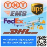 DHL/UPS/FedEx Air Epress From China to Worldwide