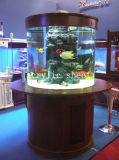 Best-Selling Acrylic Fish Tank