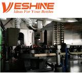 Automatic 1L~ 5L HDPE Bottles Blowing Moulding Machine Cans Make Machine