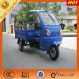 Semi ABS Canopy for Cargo Tricycle