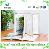 Fancy Paper Printing Hot Stamping Business Paper Brochures