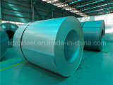 DC01ze Galvanized Steel Coil (Sheet)