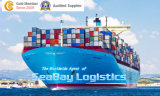 China to Italy Sea Freight/Ocean Freight/Shipping Service