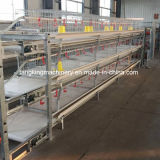 Wholesale Chicken Cage H Type Best Price Poultry Farm Egg Layer Cage