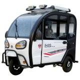 Chinese Manufacturer Wholesale Closed Electric Tricycle
