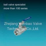Threaded 2PC Stainless Steel Ball Valve