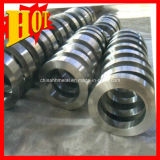 AMS 4928 Gr1 Titanium Forging Loop Manufacturer & Best Price