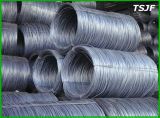 Factory Price SAE1006/SAE1008 High Carbon Steel Wire Rod for Nail