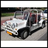 Gasoline Model Automatic Classic Moke Vehicles for Sale