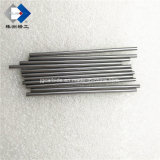 Polished Tungsten Carbide Rod on Sale with Favorable Price