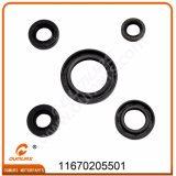 Motorcycle Spare Part Pieza De Motocicleta Oil Seal Kit for Honda Cgl125-South America