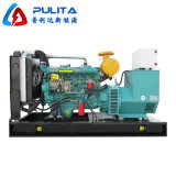 China Brand Cheap Power Diesel Generator