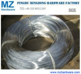 16g Electro Galvanized Iron Wire for Middle East Market