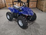 Cheapest Mini Kids ATV 110cc Engine Quad Bike for Sale