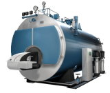 Vertical Wood-Fired Water-Tube Steam Boiler