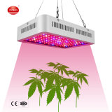 Dimmable Meanwell Driver Sunlike Full Spectrum Spider Farm Lights Sf1000 LED Panel LED Grow Light Hot Sale Products