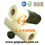 Competitive Price Heat Transfer Printing Paper in Roll or Sheet