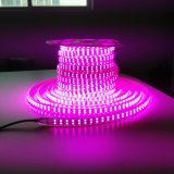 Pink Purple LED Strip Light Rope 120V LED Ribbon