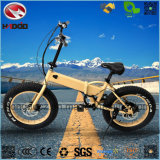Wholesale 250W Fat Tire Electric Folding Bike for Child