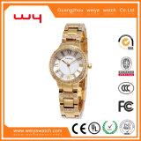 Wholesale Custom Fashion Lady Luxury Jewelry Gift Wrist Watches (WY-018C)
