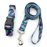 Wholesale Cheap Attached Pure Color New Design Pet Leashes Collar